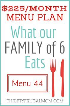 $225/MONTH MENU PLAN FOR OUR FAMILY OF 6 (POST #44)