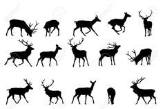 3608629-red-deer-silhouette-vector-collection--Stock-Vector-stag.jpg (1300×866)
