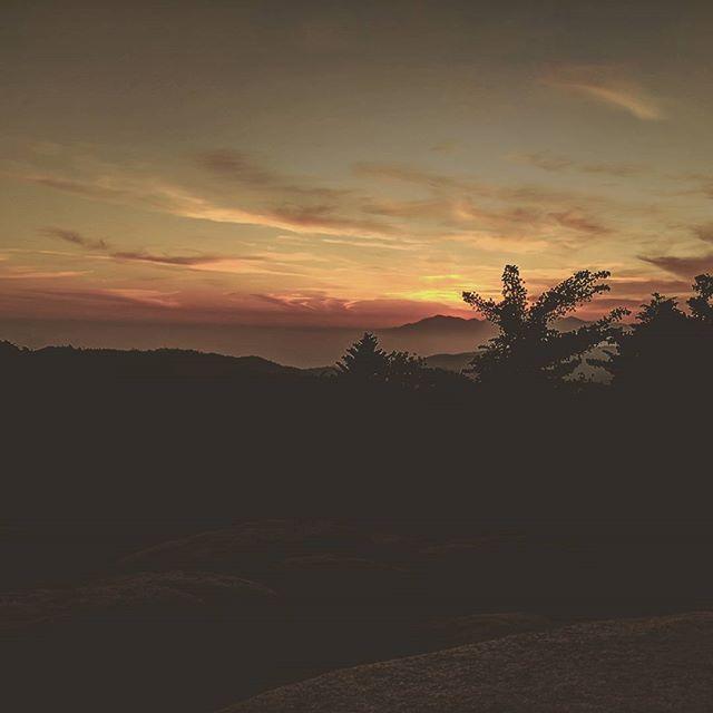 Reposting @p.hia_: Flashback to watching the sunset with my baby ♥️ #AlquilerDeFincasEnEl #EjeCafetero #AlquilerDeFincas #AlquilerDeFincasEnAntioquia #AlquilerDeFincaenCundinamarca #FincasEnArriendo #AlquilerdeCabañas #FincasParaAlquilar #FincasDeTurismo #PaquetesTuristicos #CasasCampestres