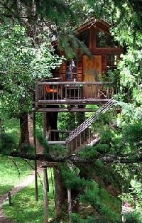 Wow a hotel made up of tree houses and zip lines, in Oregon. Very cool!!!: Treehouses Oregon, Oregon Treehouses, Tree Houses, Families Meeting, Oregon Trees House Hotels, Families Vacations, Treehouses Hotels, Dream Trees House, Treehouse Hotel