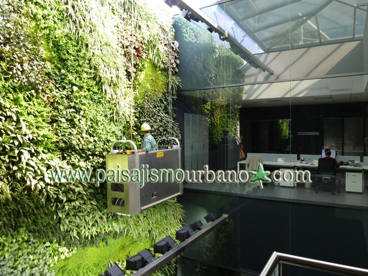 Jardín vertical interior en las oficinas de una multinacional española