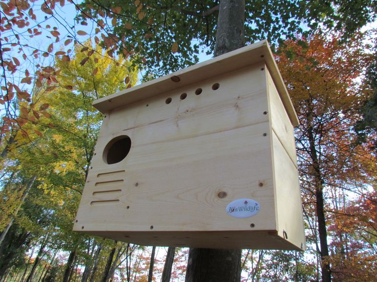 Barn Owl Nest Box Kit - WoodWorking Projects & Plans