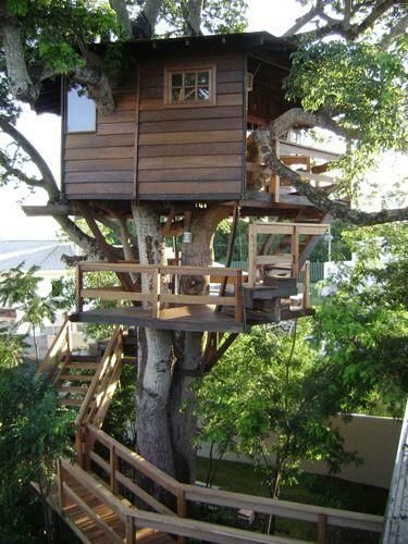 Arktetonix » Casa na Árvore Mais