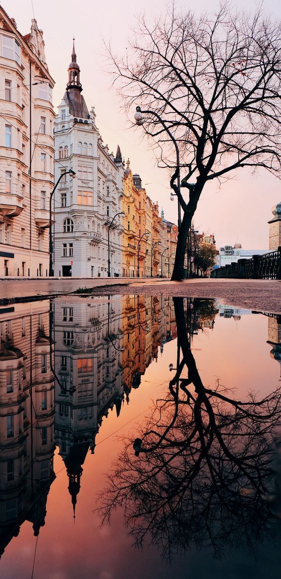 Wallpaper Tumblr – Spiegelbild – #hintergrundbilder
