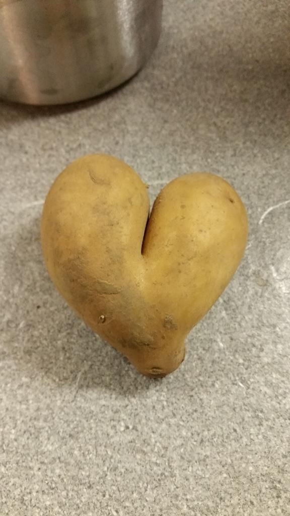 Das perfekte 0385. Meine Beilagen = Kartoffelturm mit weissem Gemüse-Rezept mit einfacher Schritt-für-Schritt-Anleitung: Die gewünschten Gemüse schälen…