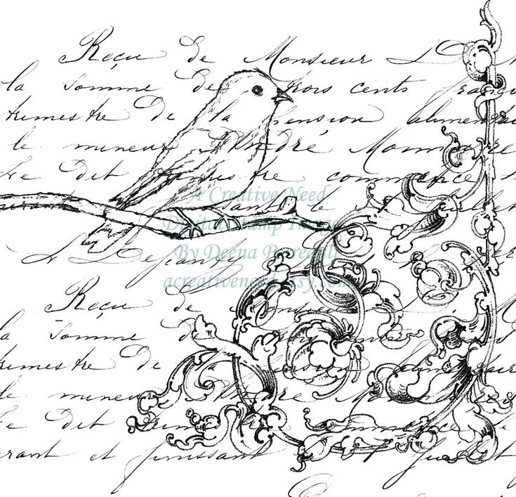 Instant Download Digital Stamp Image Bird Flourish and Script Collage by ACreativeNeed on Etsy