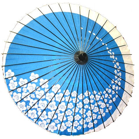 ombrello-blu.jpg