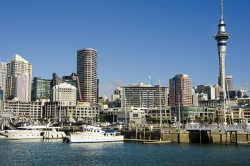 ALL Auckland Tours, Travel & Activities