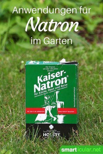 Natron ist eine vielseitige Allzweckwaffe im Haushalt und für die Gesundheit. Aber auch im Garten kann das weiße Pulver gute Dienste erweise
