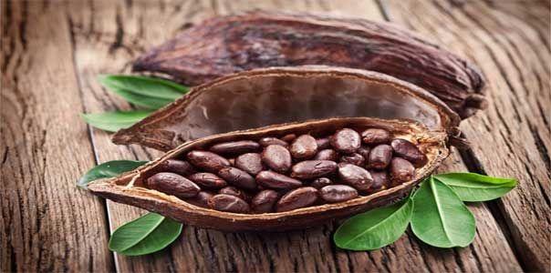 МАСКА. 1 ст ложка перемолотого зеленого чая, 1/2 ст ложки какао-порошка, 1 ч ложка меда, горячая вода (80°С). Смешайте зеленый чай с какао и залейте горячей водой до образования густой кашицы. Дайте остыть до приятной температуры и добавьте мед/или растительное масло/лимонный сок/витамин Е. Наложите на чистую слегка влажную кожу на 20 мин, смойте прохладной водой и нанесите на лицо увлажняющий крем.