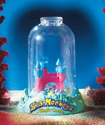 The Amazing Live Sea-Monkeys® every child to have them once