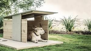 Image result for cool animal house