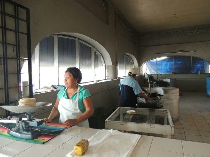 corn tortillas in the making Mexican market