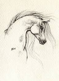 Image result for wild mustangs hidden pics drawings