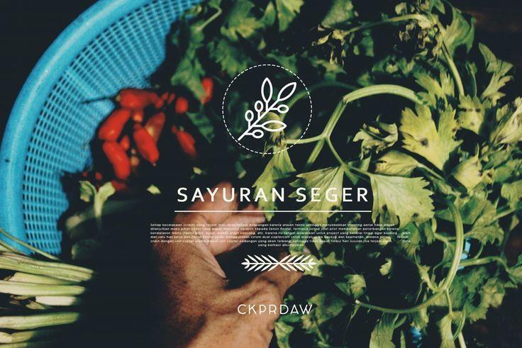 sayuran kesegaran hakiki, bermanfaat baiq bagi tubuh dan ah entahlah