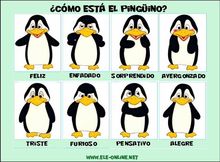 ¿Cómo está el pingüino?