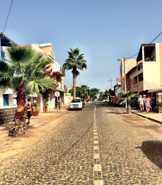 Palm trees on the streets of Santa Maria, Sal, Cape Verde #Kaapverdie