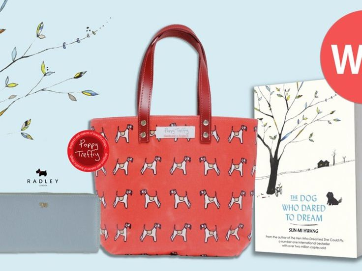 Win a tote bag and Radley purse plus a copy of The Dog Who Dared To Dream