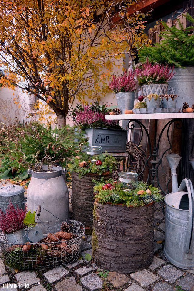 Hof 9 Ein Gartenblog In Dem Ein Fachwerkhof Saniert Wird In Dem Es Ab Und An Ein Gutes Rezep Gartenblog Moderne Landschaftsgestaltung Moderne Gartenentwurfe