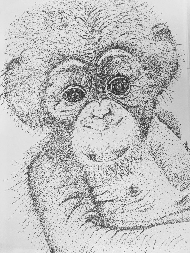 Monkey with patch technic