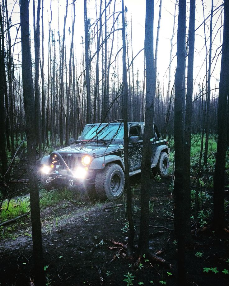 Fort McMurray after the wildfire in the burnt woods. Jeep off-road mud trails exploring
