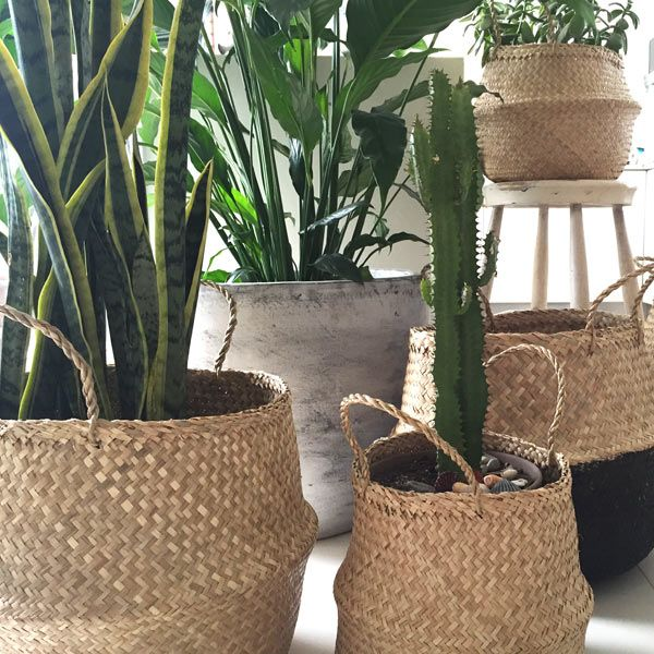 SEAGRASS Belly Baskets | Bohemian Luxe Homewares | dosombre.com
