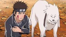 Watch Naruto Shippuden Episodes Shippuuden Subbed and Dubbed NarutoGet