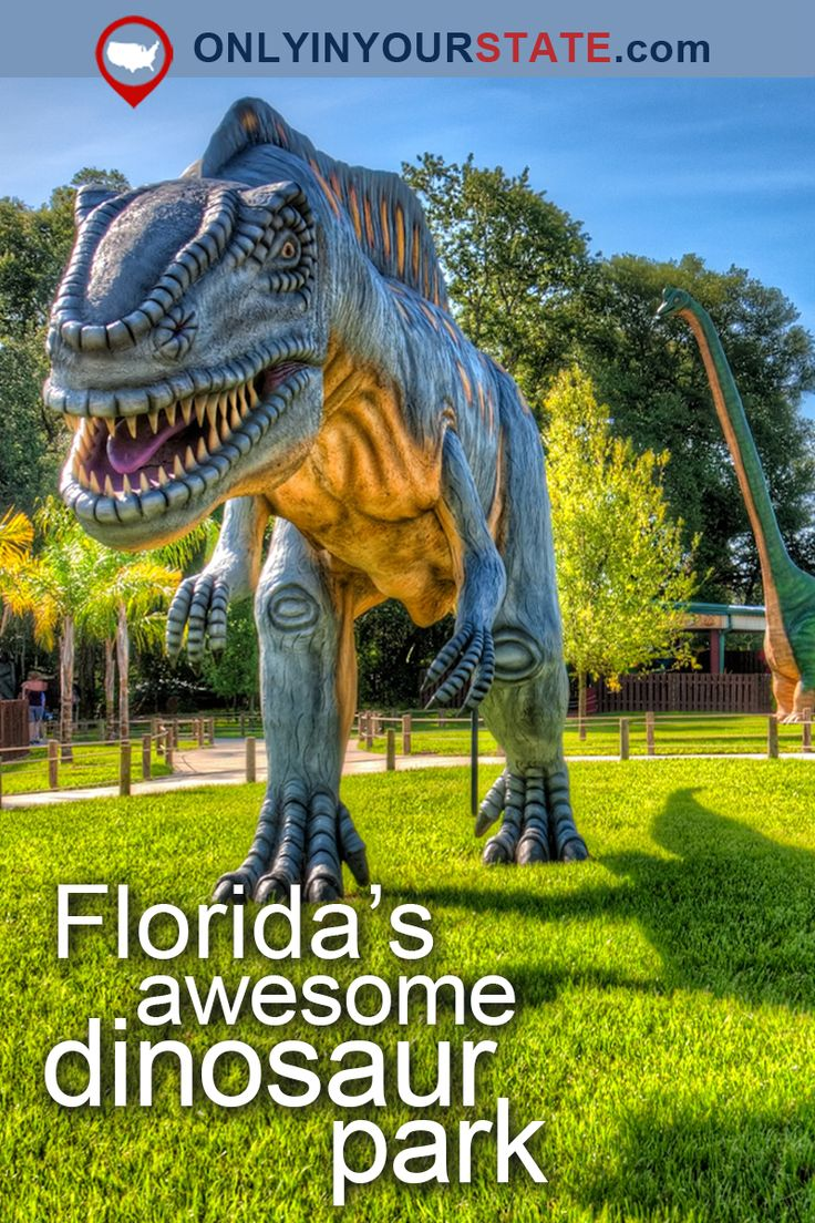Travel | Florida | Attractions | East Coast | USA | Dinosaur Park | Hidden Gems | Things To Do | Day Trips | Places To Visit | Vacations | Adventure | Natural Beauty | Tampa | Orlando | Plant City | Family Fun | Outdoor Park | Fossils | Road Trips