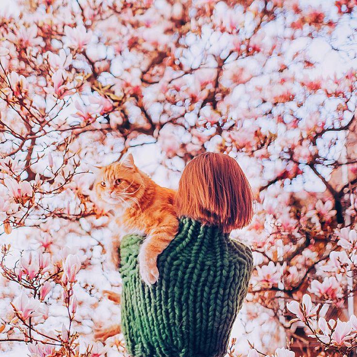 Sanatlı Bi Blog Rus Fotoğrafçı Kristina Makeeva'dan İlham Veren 24 Fotoğraf 8