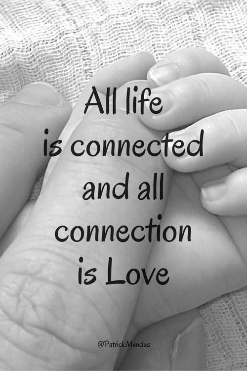 All life is connected and all connection is Love...