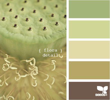 flora detail - color swatches