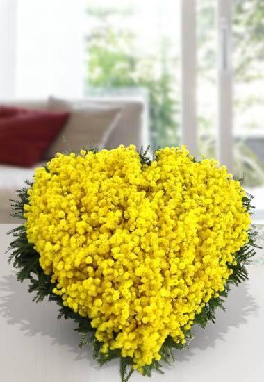 Interflora® Fleurop® Italia. Cuore di mimosa/ https://it-it.facebook.com/interflora.fiori http://www.interflora.it/Prodotti/2/Italia/7031/Festa%20della%20Donna/Composizioni/Per%20te.aspx