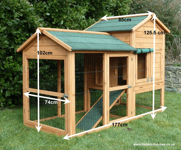 34 best images about bunnies guinea pigs on pinterest for Outdoor rabbit hutch kits