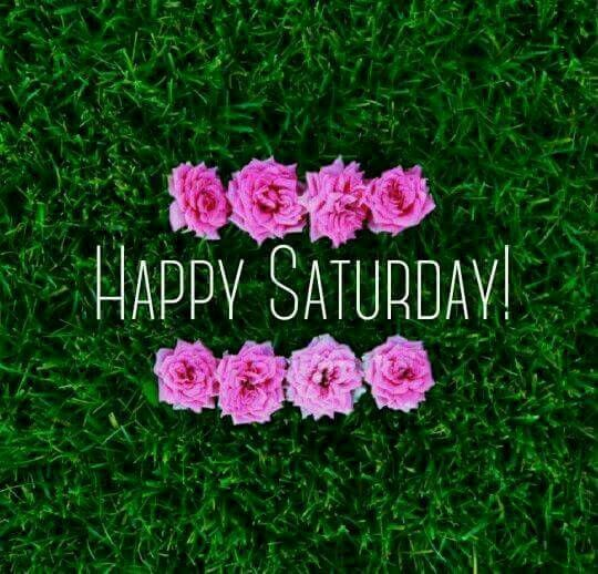 Happy Saturday Flowers Image good morning saturday saturday quotes good morning…