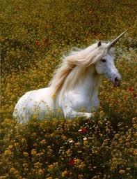 unicorn in summer flowers