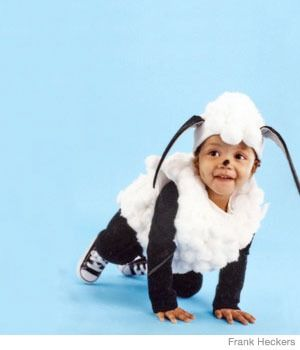 Click through to learn how to #DIY this baby sheep costume -- no sewing required!