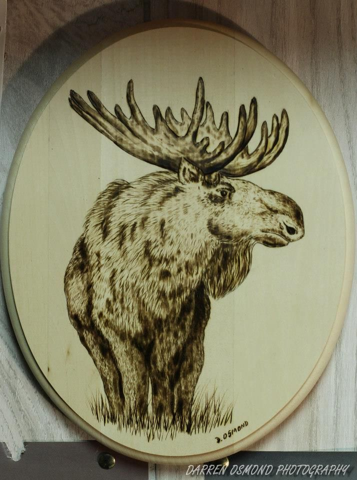Woodburning Of Moose