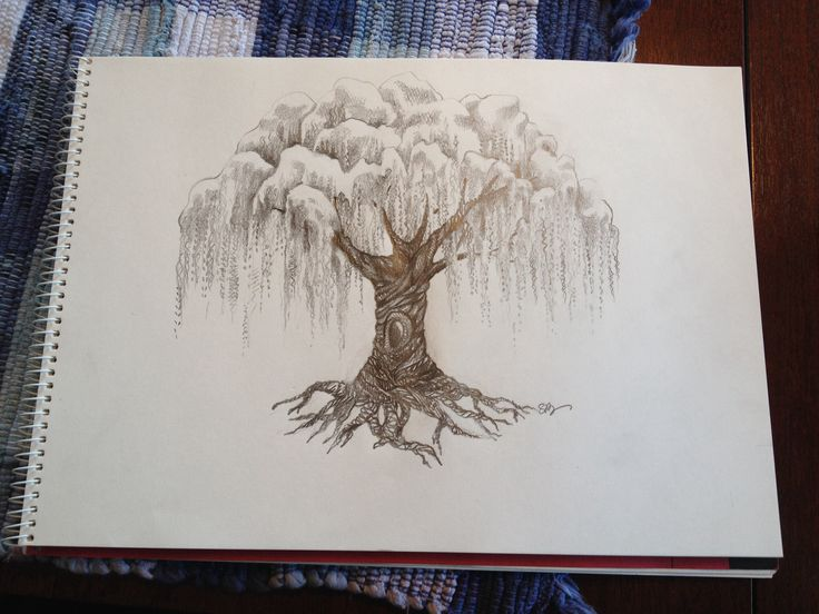 Willow tree drawing Dear everyone who pins this - and there are a lot of you. I can do a one of a kind drawing similar to this in pencil, ink, colored pencil, marker, you name it...for 20 - 40 dollars plus shipping, depending on the size. Think about it! Real art for you house! salvage.love@outlook.com