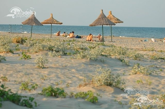 Se intampla ceva straniu! Din ce in ce mai multe cautari pe site despre plajele din Delta Dunarii. Sa fie oare din cauza verii?  http://www.info-delta.ro/delta-dunarii-17/plajele-din-delta-dunarii-287.html