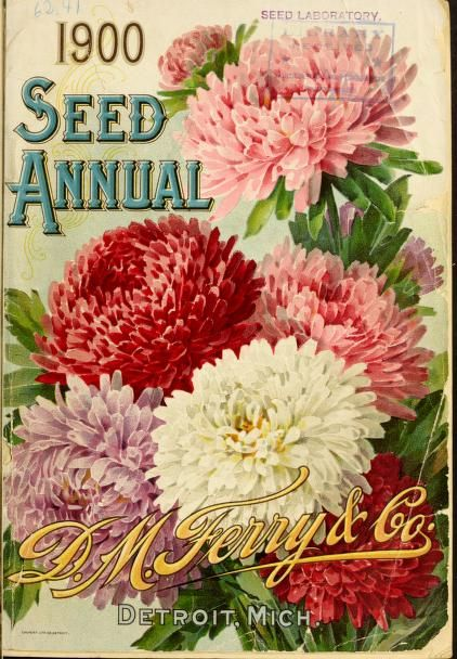 1900 - Seed annual. - Biodiversity Heritage Library. #BHLinbloom
