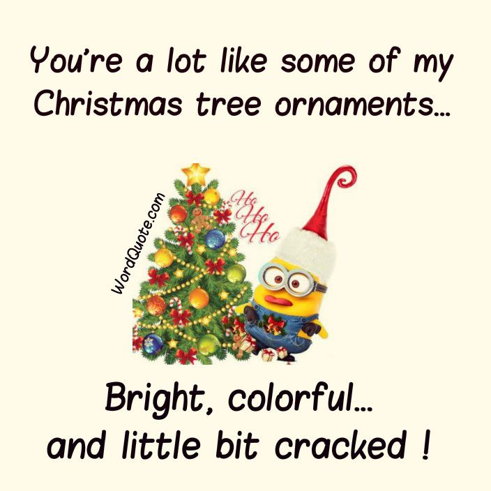 Best 25+ Funny Christmas Quotes Ideas On Pinterest