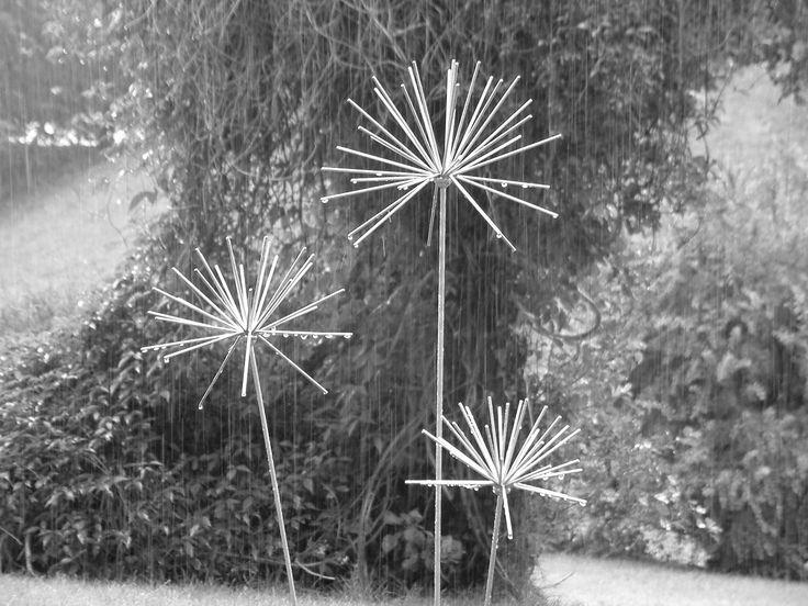 Nice Black And White Image Of Our Allium Sculptures In The Rain. Www.ironvein.  Onion FlowerMetal Garden ...