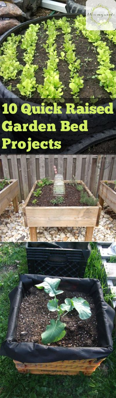 If you love the results of a backyard garden but aren't too keen on all the work, you've probably thought about raised beds. Raised beds can dramatically reduce weeds, which makes your garden a lot more productive and pleasant. The only... #containergardening #easygardeningprojects #gardening