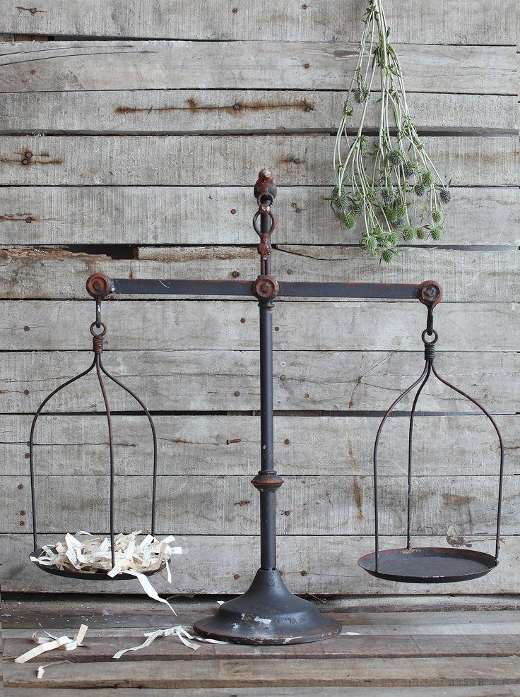 Aurelia metal scale with bird