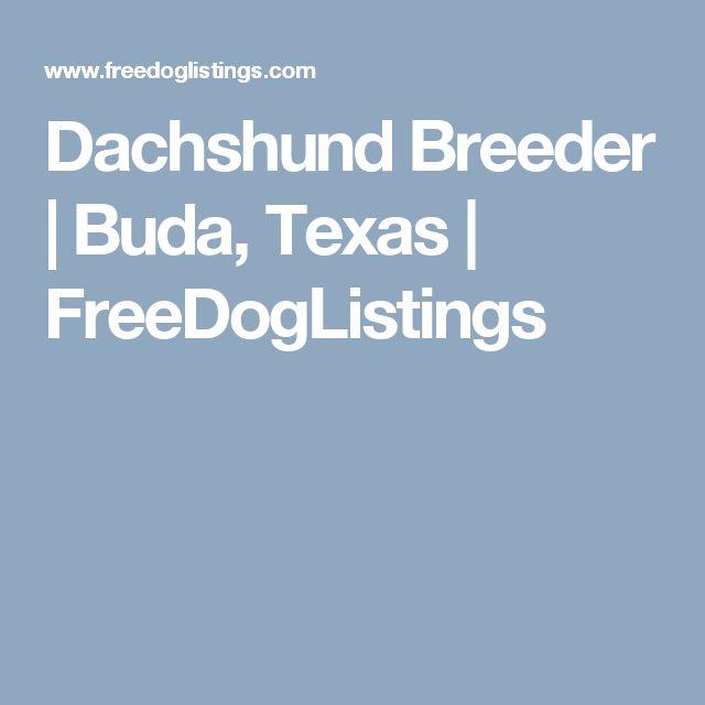 Dachshund Breeder  | Buda, Texas | FreeDogListings