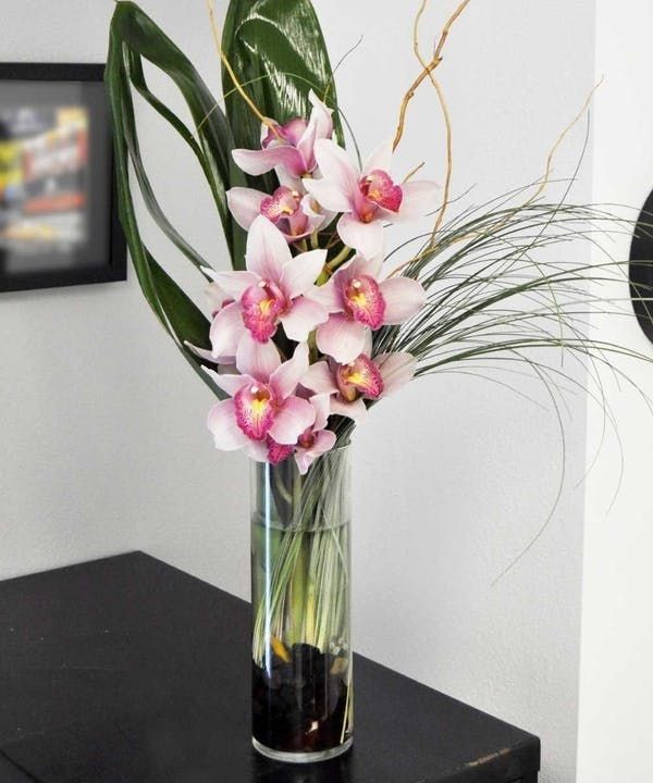 Seaside Cymbidiums Orchids Same Day Flower Delivery Cymbidium Orchids