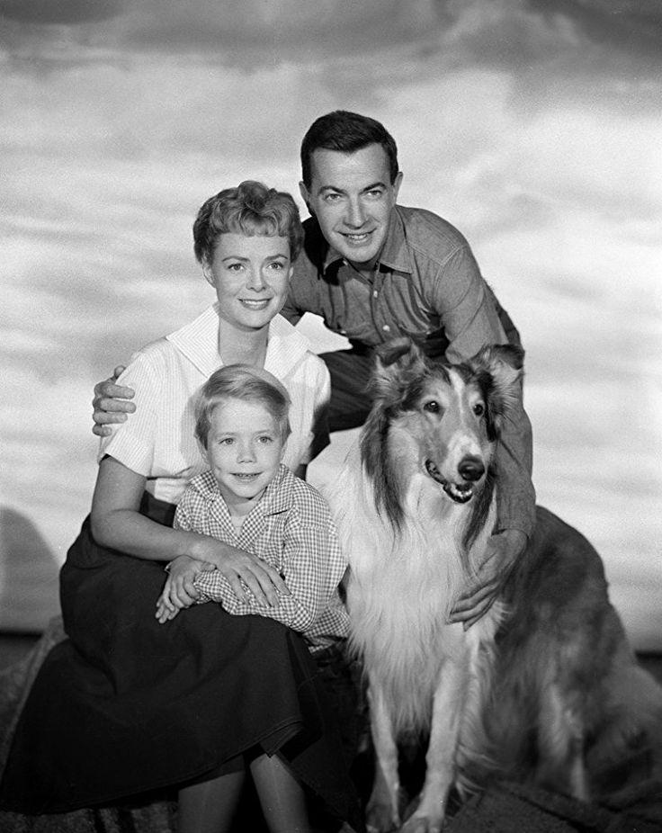 June Lockhart, Ruth Martin, Jon Provost, Hugh Reilly, and Paul Martin in Lassie (1954)