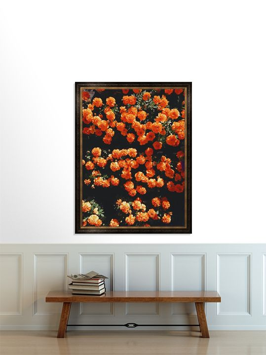 Orange Bloom - Mixed Imagery