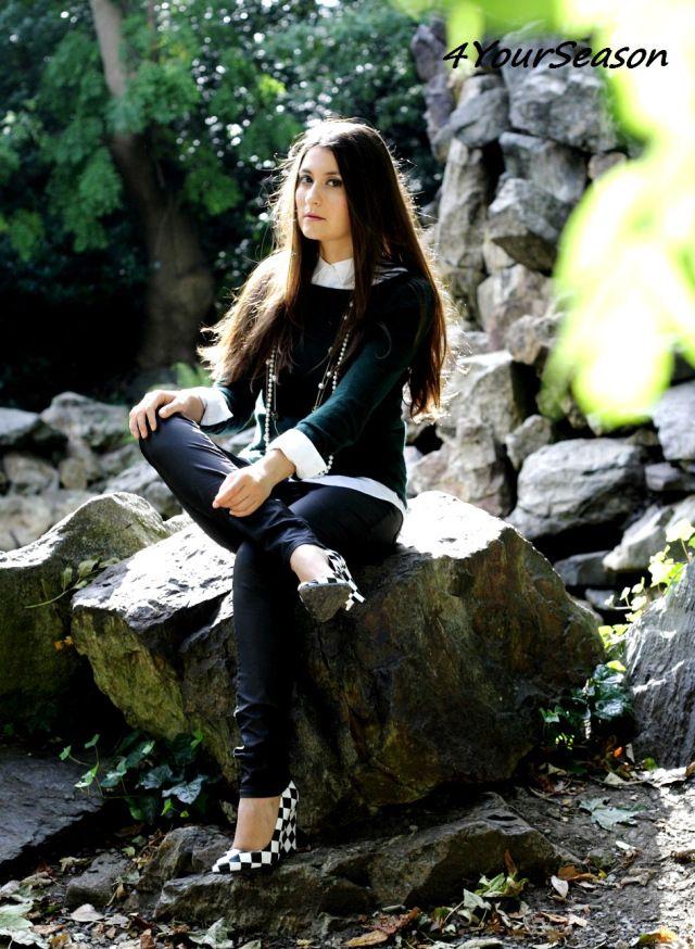 Iveagh Gardens Fall