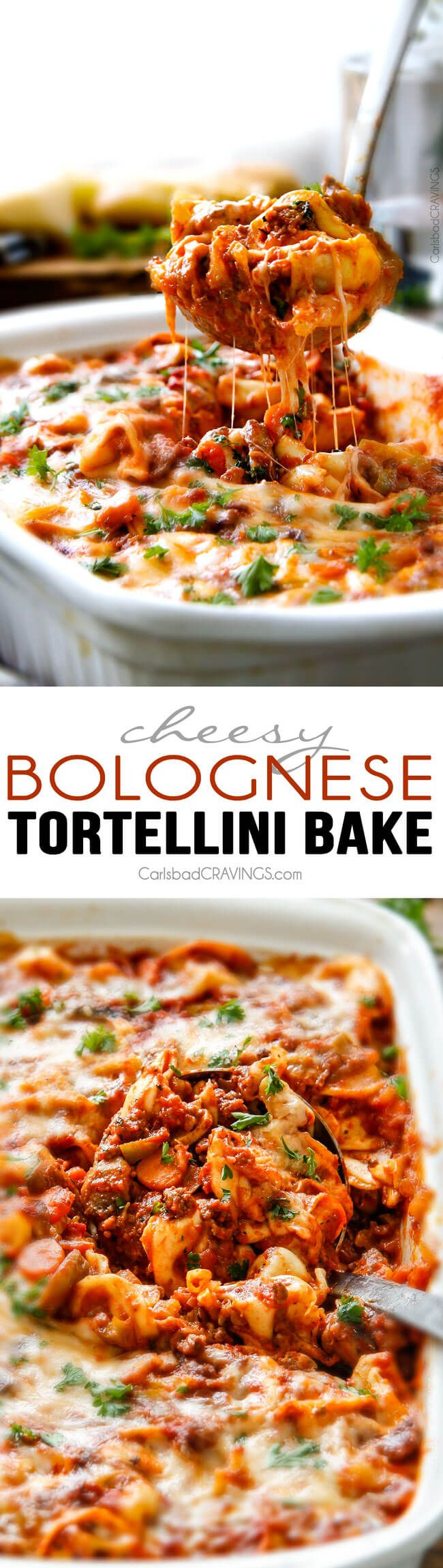 Cheesy Bolognese Tortellini Bake - This is my family's favorite pasta of all time - they BEG me to make it!  The sauce is incredibly flavorful and the cheesiness can't be beat!  via @carlsbadcraving